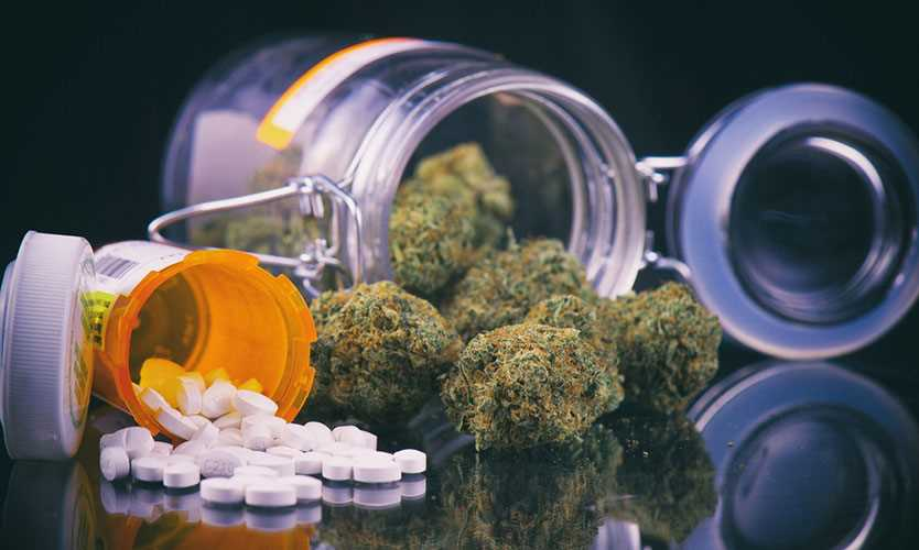 Study: Cannabis Associated with Reduced Opioid Use, Prolonged Benefits in Pain Patients