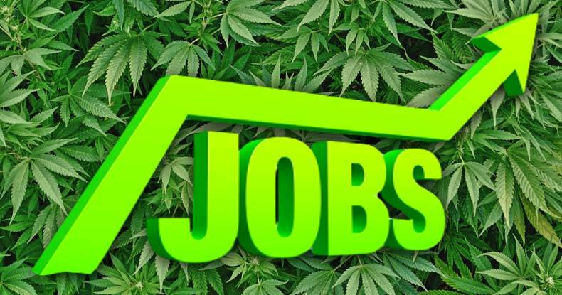 The Cannabis Jobs Market Is Booming